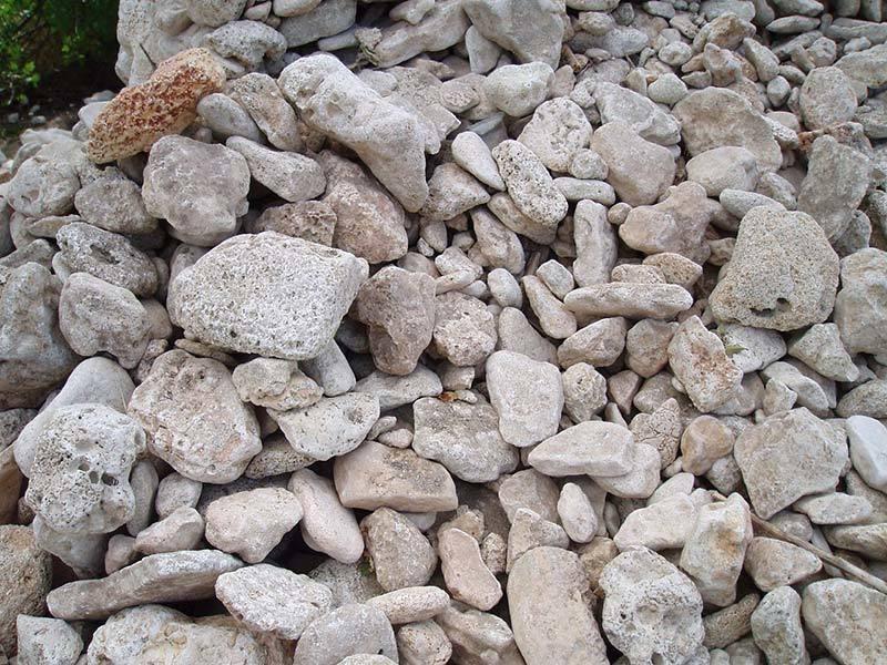 Известняк фото минерала